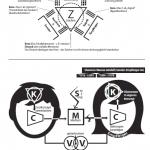 Organonmodell nach Karl Buehler